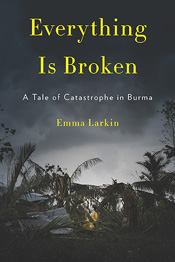 Review: Everything is Broken by Emma Larkin post image