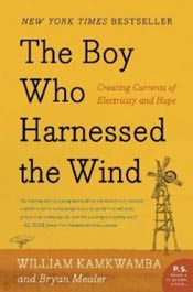 Review: The Boy Who Harnessed the Wind post image