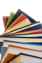 Ten Books I Missed from 2012 (With a Poll!) post image