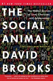 Review: 'The Social Animal' by David Brooks post image