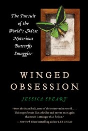 Post image for Review: 'Winged Obsession' by Jessica Speart