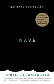 Post image for Review: 'Wave' by Sonali Deraniyagala