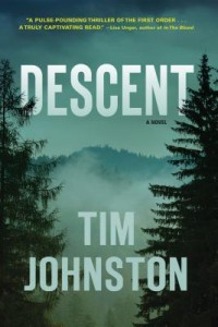 descent by tim johnston cover