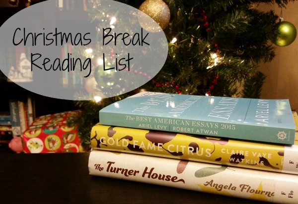 christmas break reading list